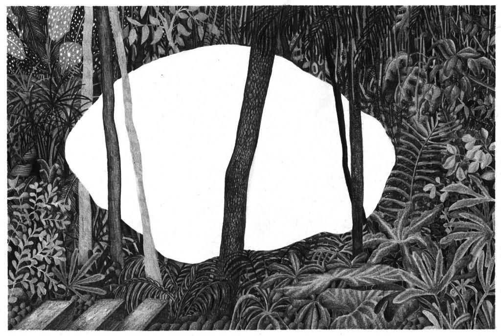Hurralopecia Marion Balac 1 (Copier)