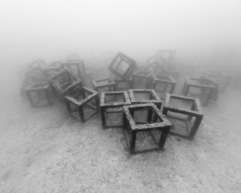 Nicolas Floc'h, Structure productive, récif artificiel Cubes, -27m, Golfe-Juan 2014,  Photographie noir et blanc, hahnemühle matt fibre, 80 x 100 cm, Ed 3.Ed 3 + 1EA
